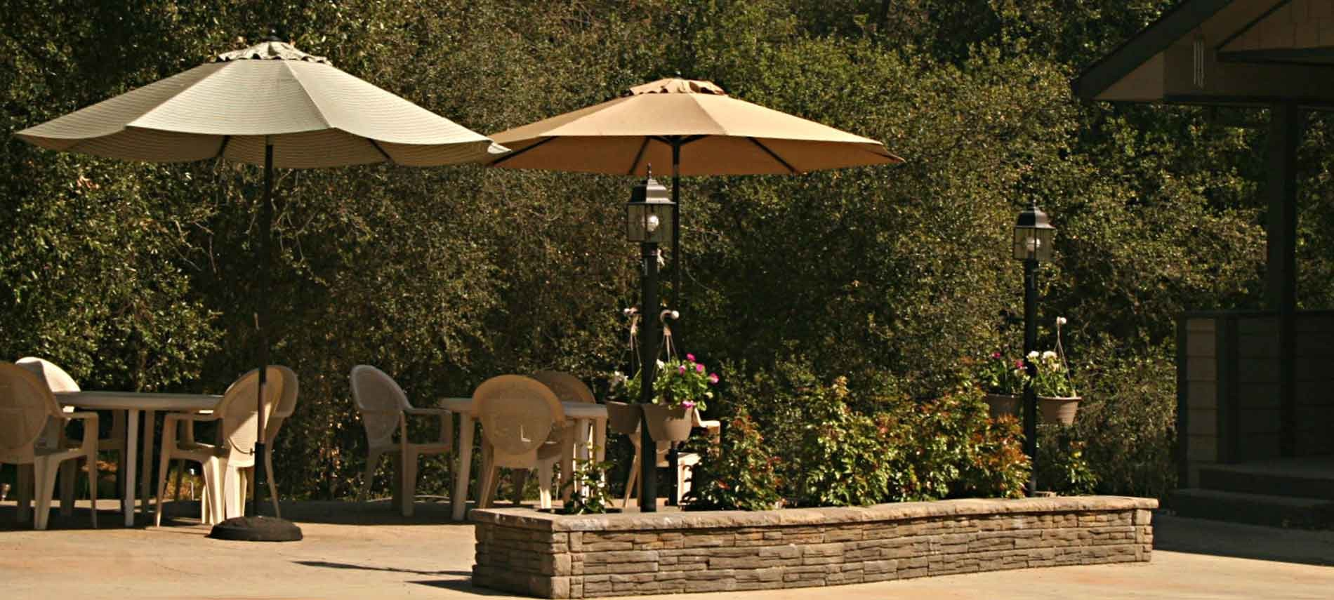 Patio with tables & umbrellas with the woods in the background